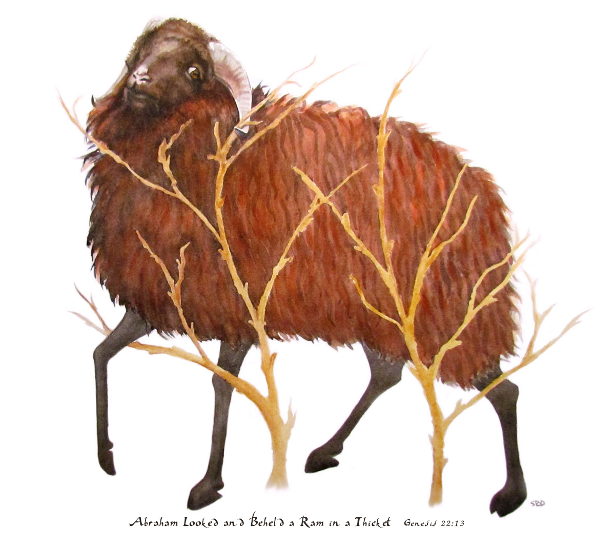 watercolor of ram in the thicket