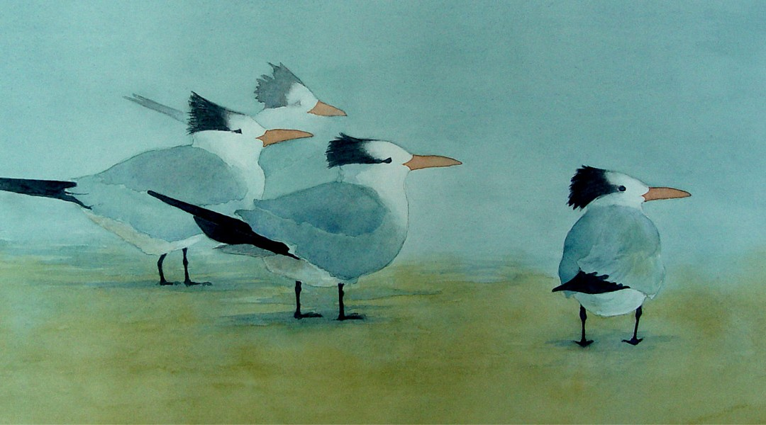 Terns In The Mist
