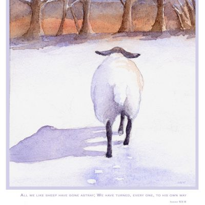 watercolor of sheep