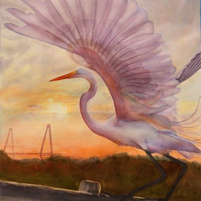 preening egret watercolor