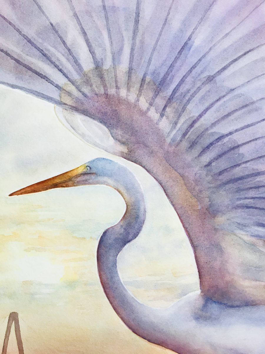 egret watercolor